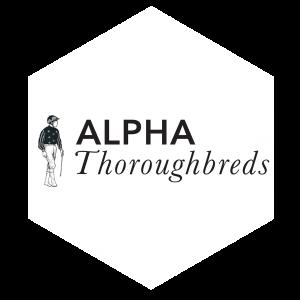 Alpha Thoroughbreds